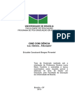 2013_ErizaldoCavalcantiBorgesPimentel.pdf