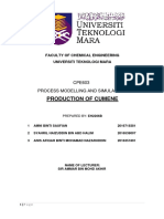 Full Report Hysys Cumene CPE603