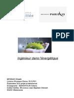 Rapport-EPPFINAL FIN.pdf