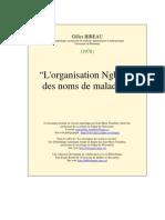 Organisation Ngbandi