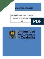 GUIA PRACTICA A1