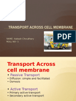 transport across memberane asmcs