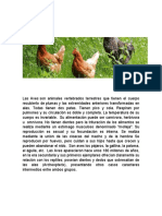 Material de Estudio de Aves.docx