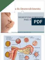 Desenvolvimento pré-natal