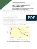3 -Tema 1.B - Metodologia de nivel 1 - EXEMPLU.pdf