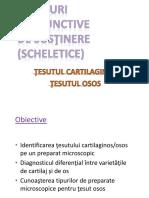 07.Tesuturi cartilaginos si osos_2019_site.pptx