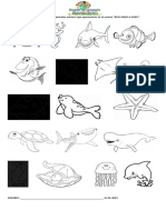 Encierra y colorea los animales marinos que aparecieron en el cuento
