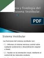 SISTEMA VESTI (1).pdf