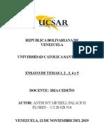 Ensayo de temas 1, 2 , 3 , 4 y 5.docx