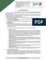 Sesión 4_ CARBOHIDRATOS.pdf