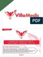 CB 19 - Anatomía Humana 7 - Online.pdf