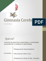 Gimnasia_Cerebral_de_Luz_Maria_Ibarra