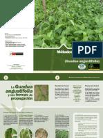 PD 428-06 R.2 (F) Propagación G Angustifolia.pdf