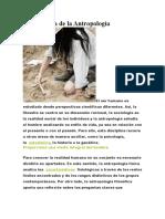 Importancia de la Antropología