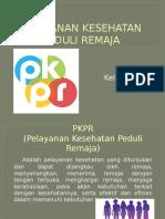 PKPR klp3