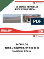 Modulo I _ Tema 1- Régimen Juridico de la Propiedad Estatal
