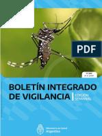Dengue Documento