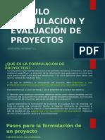 ¿QUÉ ES LA FORMULACIÓN DE PROYECTOS_