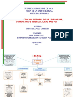 293651275-Mapa-Conceptual-Del-MAIS.docx