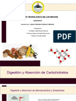 Digestion y Absorcion de Carbohidratos