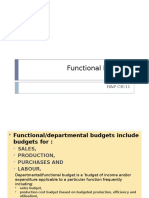 2. Functional budgets.pptx