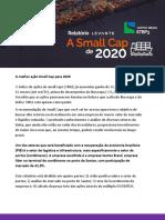 A MELHOR SMALL CAP DE 2020 - LEVANTE.pdf