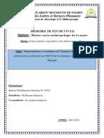 version memoire 1.1.pdf