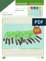 Omida mancacioasa - Instructiuni pentru activitate de amprentare.pdf