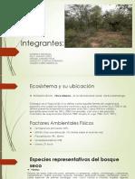 Paso 3_Identificar Ecosistemas y Sus Componentes