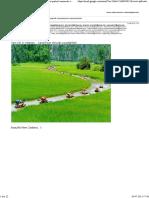 Gmail - Fwd_ Fw_ Redirecţionat_ Uauuu..pdf