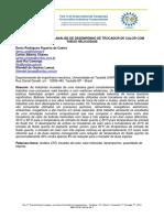 2012-Figueira de Castro.pdf