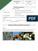 svt-2-2.pdf