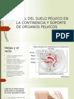 PAPEL DEL SUELO PELVICO EN LA CONTINENCIA Y.pptx.pptx