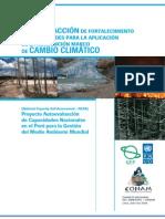 30 - Plan de acción de fortalecimiento de capacidades para la aplicación de convención marco de