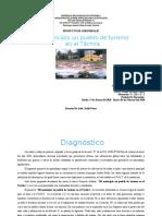 Proyecto del Municipio