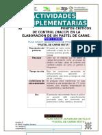 HACCP DE PASTEL DE CARNE MIXTA PARTE 1