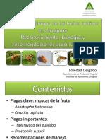 PRINCIPALES PLAGAS URUGUAY