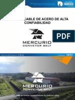 8. MERCURIO-WONG - DEEV FAJAS 2018.pdf