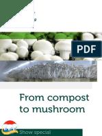 MushroomsGB NL