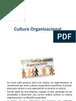 3. Cultura organizacional.pptx