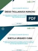 Certificado RECONOCIMIENTO Plantilla