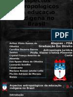 Aspectos antropológicos da educação indígena no Brasil.pptx