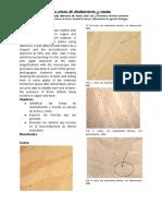 P1.CONMEC.MLD