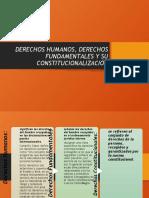 CONSTITUCIONALIZACION DE LOS DERECHOS HUMANOS