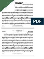 HL_DDS_10107591hx3Bnm0YU.sco.pdf