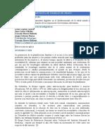 Propuesta de trabajo de grado UNAC.docx