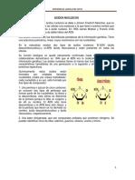 ACIDOS NUCLEICOS.pdf