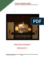 EL JESÚS DEL SAGRARIO   Hora Santa.pdf