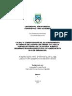 Causas y consecuencias del bajo rendimiento académico en los niños de primer ciclo en la jornada extendida de la escuela Alberto Hernández Rosario año lectivo 2019.docx