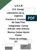Cromatografia-capa.fina-organica